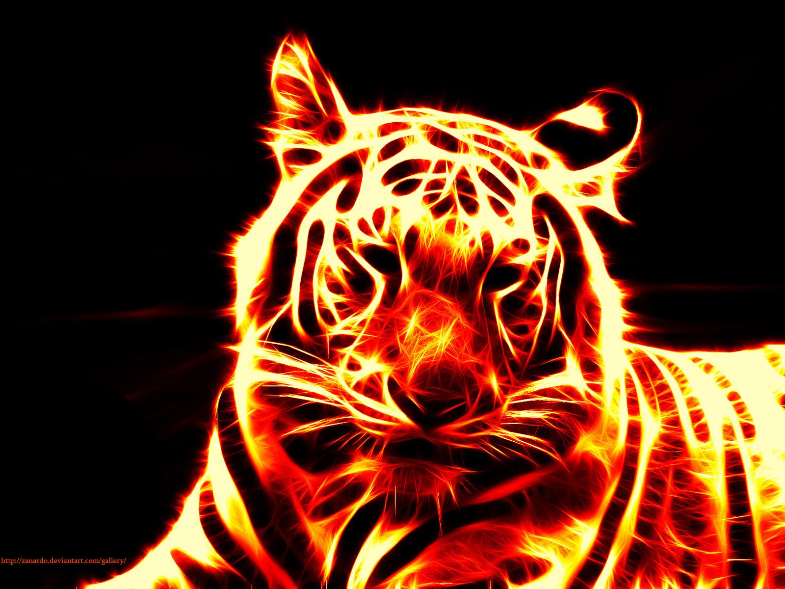 Flame Tiger By Zanardo On Deviantart