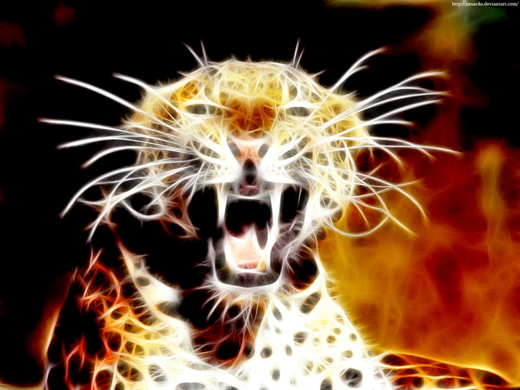 Leopard Roar by zanardo on DeviantArt