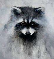 Raccoon by MeduZZa13