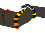 OTA [OPEN] -- Rainbow Strokes