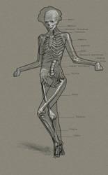 Balance Bone study
