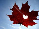 heart+leaf by TerrificGirl