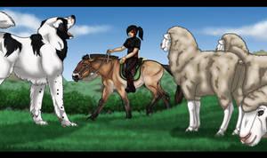 Pony Show - Kanta - Pony Trail