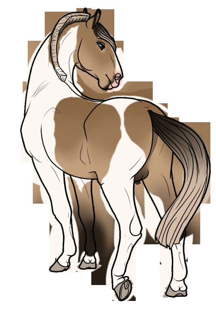 YHH - Animalgirl1869