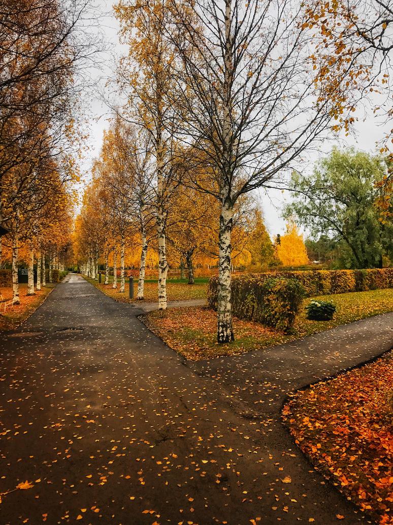 Ostersund, Svierge by nicolealundgren