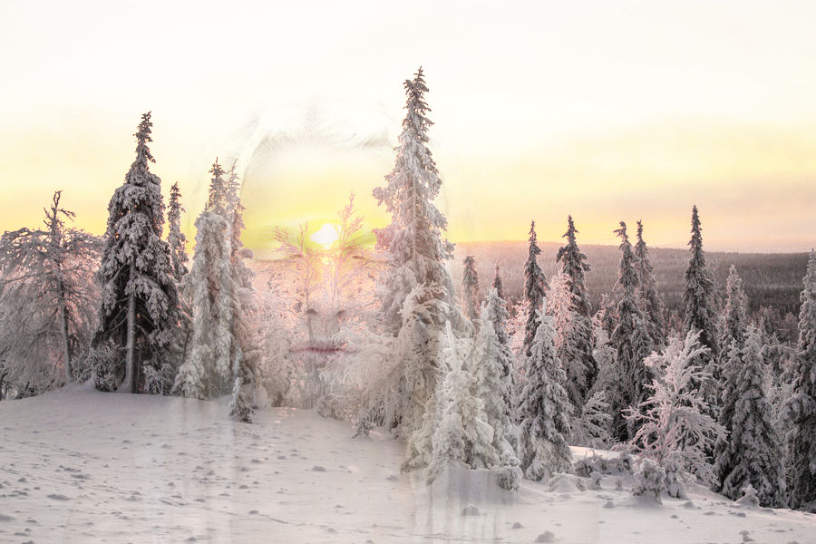 Mother Nature by nicolikai