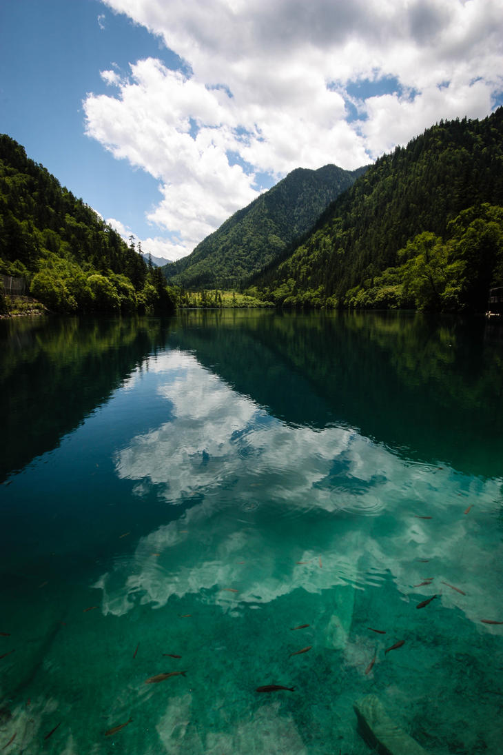 Jiuzhaigou - Panda Lake by stinebamse