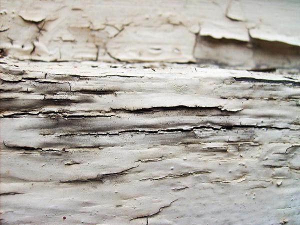 Old Peeling Paint 2 by MystStock