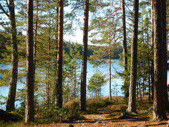 Lake View 2