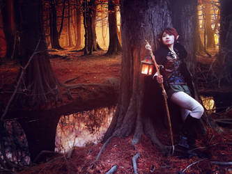 Elf Cosplay Photoshoot1 + Photomanipulation by ledious
