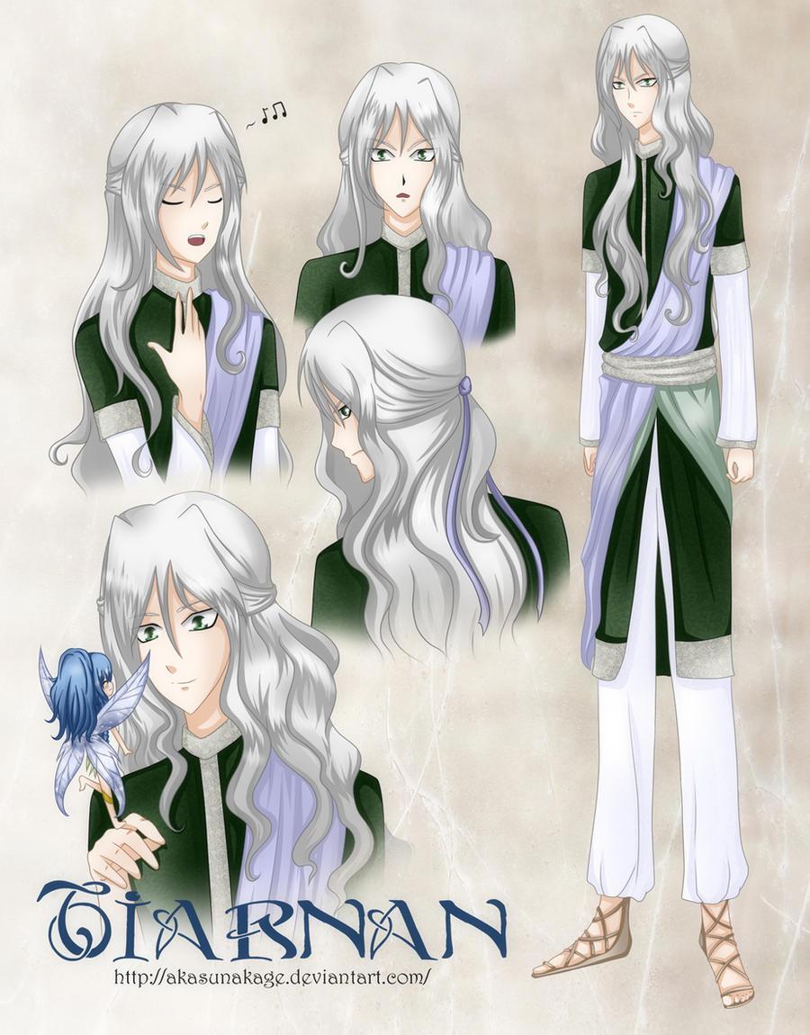 Tiarnan by AkasunaKage