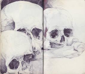 Skull Trio by SketchbookNoir