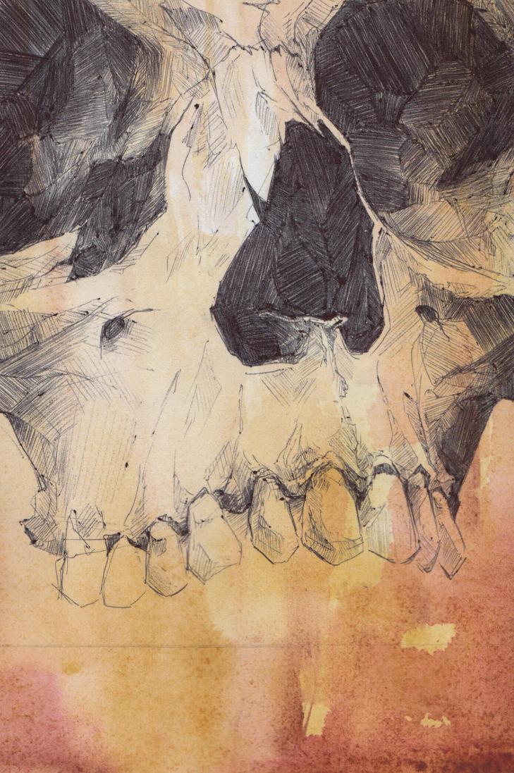 Skull Watercolor 1 by SketchbookNoir