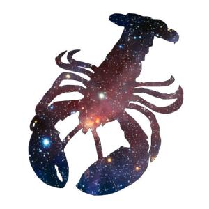 JTothVydr's Profile Picture