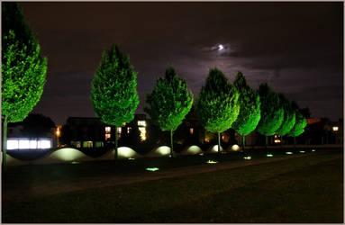 Night N Light by CedaCo