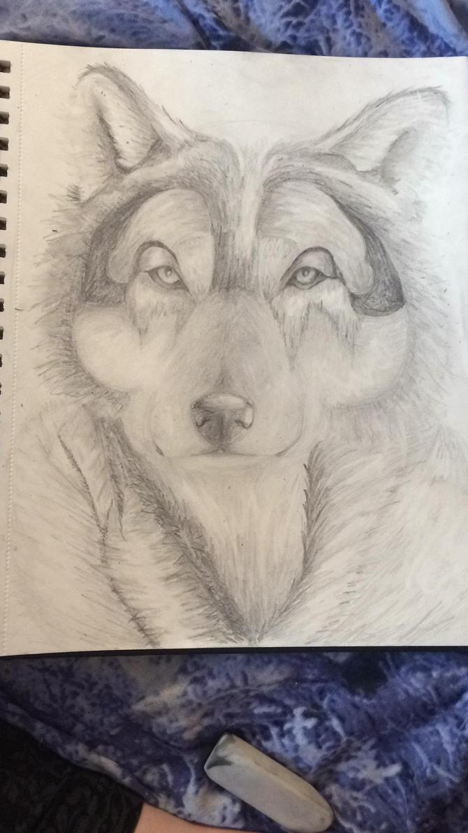 Wolfie by Rhondolite