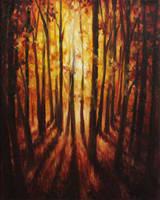 Forest Glow by crazycolleeny