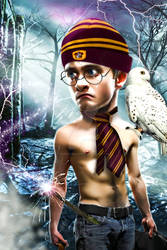Harry Potter by isabelleiboudesign