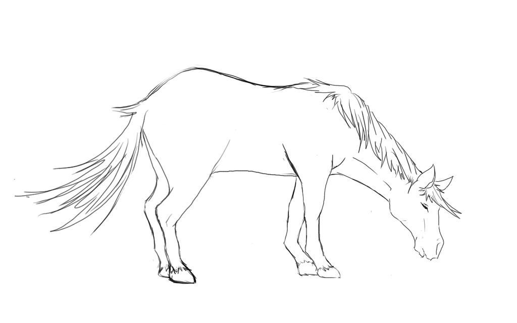 SKETCH A HORSE by akunoneko