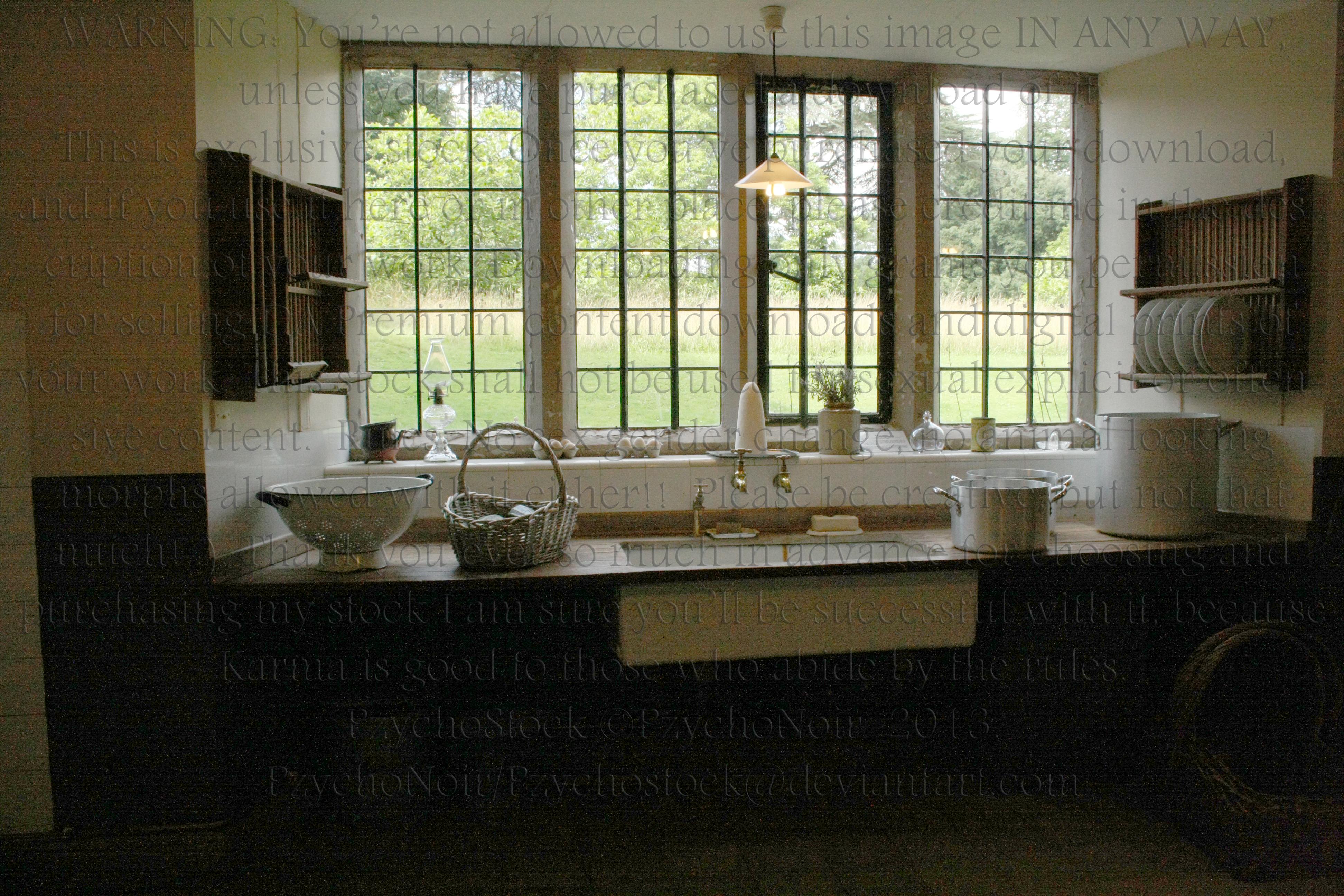 Kitchen II by PzychoStock