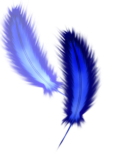 Feathers by kristin1graphicd