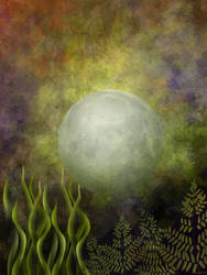 Blue Moon Rising by ninokhan