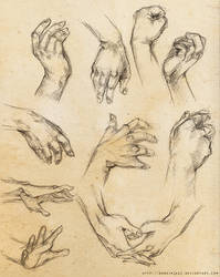 [Practice] Hands