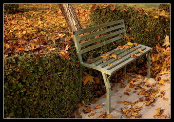 waiting for fall... by greenday-ra