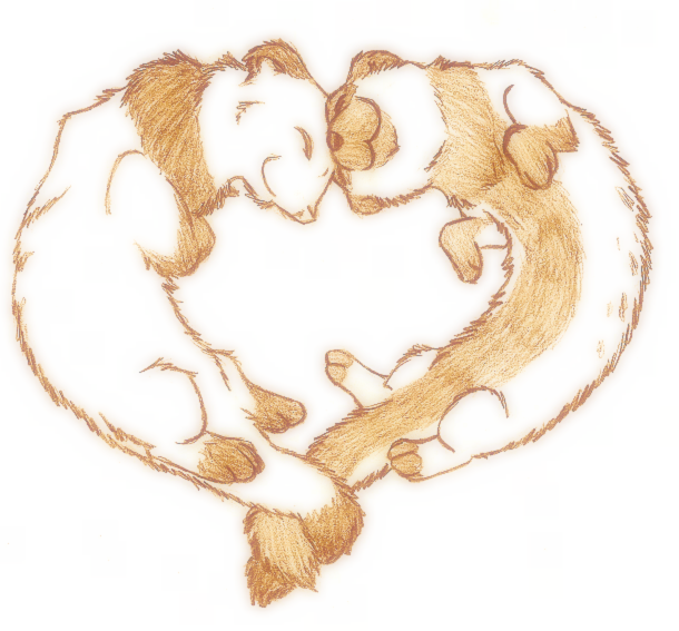 Heart Ferrets by Who-Took-My-Pie