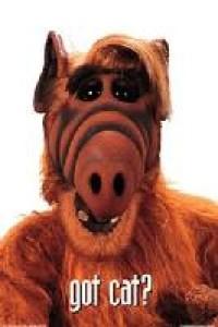 ArnalNono's Profile Picture