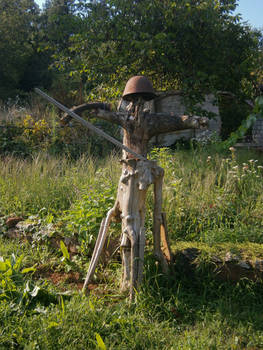 Wooden warrior