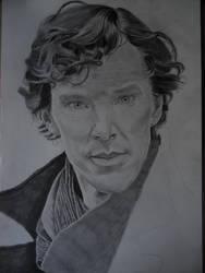 Sherlock Holmes, Benedict Cumberbatch by HollishFatVegan