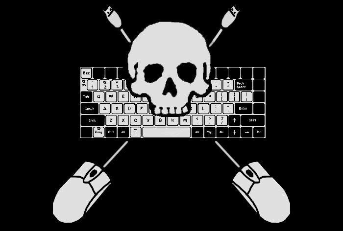 Internet Pirate Flag by Joshernaut