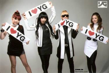 2NE1 I LOVE YG