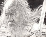 Gandalf - Sir Ian McKellen