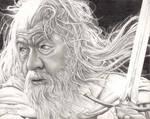 Gandalf - Sir Ian McKellen