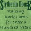 Slytherin Dark Lord by redryu82