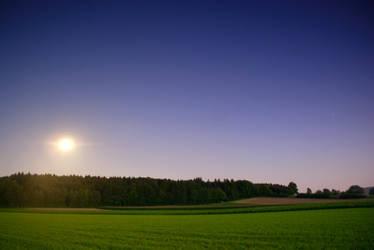 Moonshine by kkeman