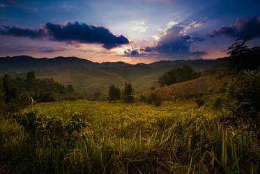 Rural Thailand 1