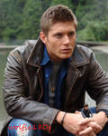 Brothers Transposed Sam and Dean