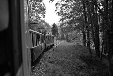 mountain train montreux