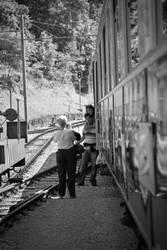 train Broc