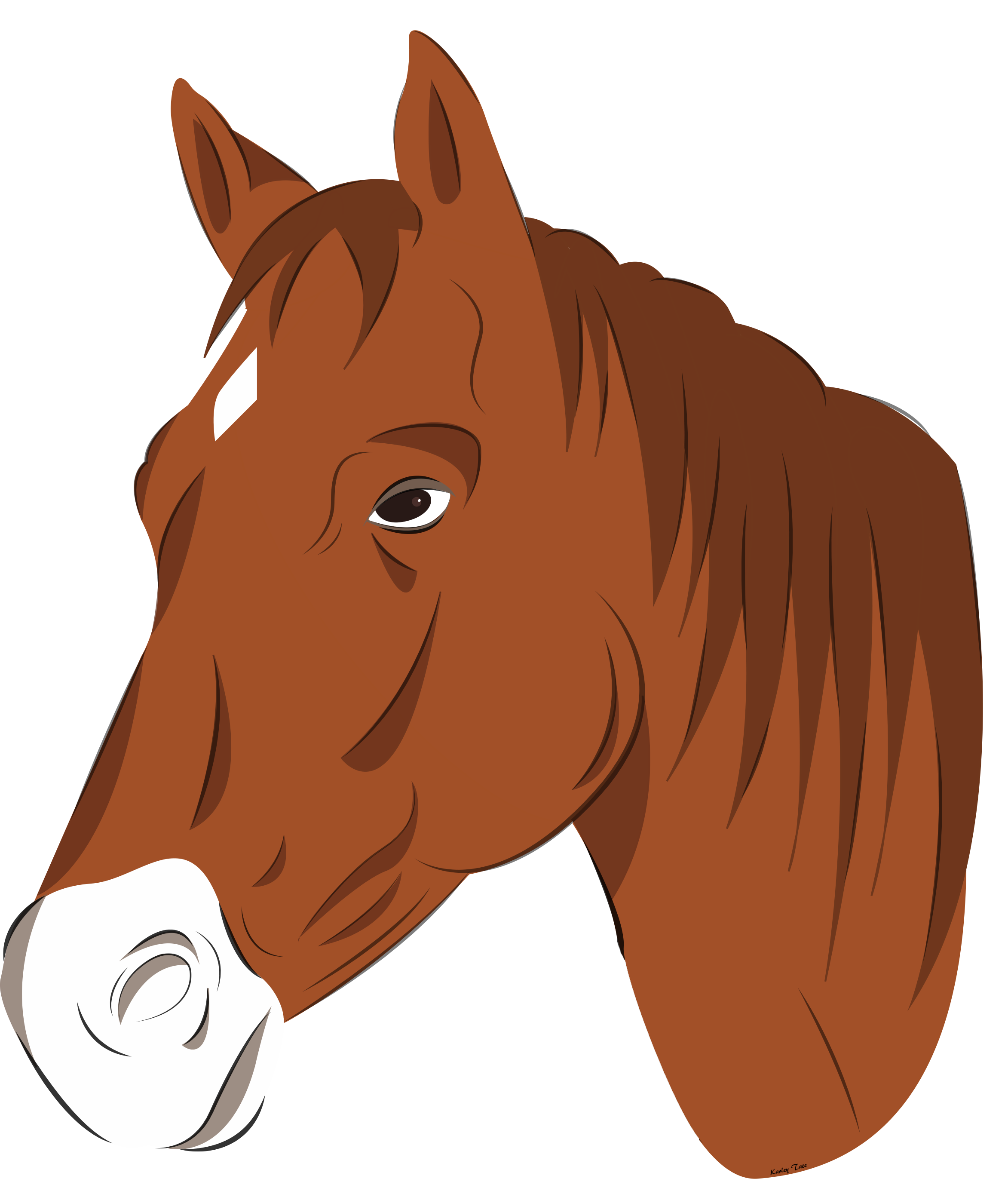horse head vector png clipart horse head in horseshoe clip art horse head heart