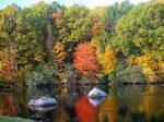 Autumn on the pond 7