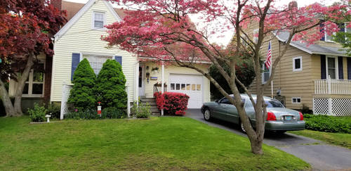 My house in spring