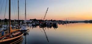 Upriver at dawn