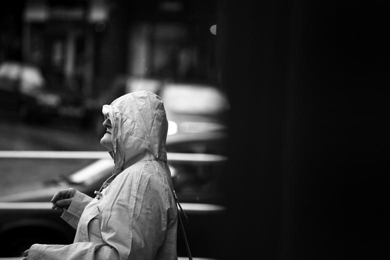 Wanderer by Zaqari