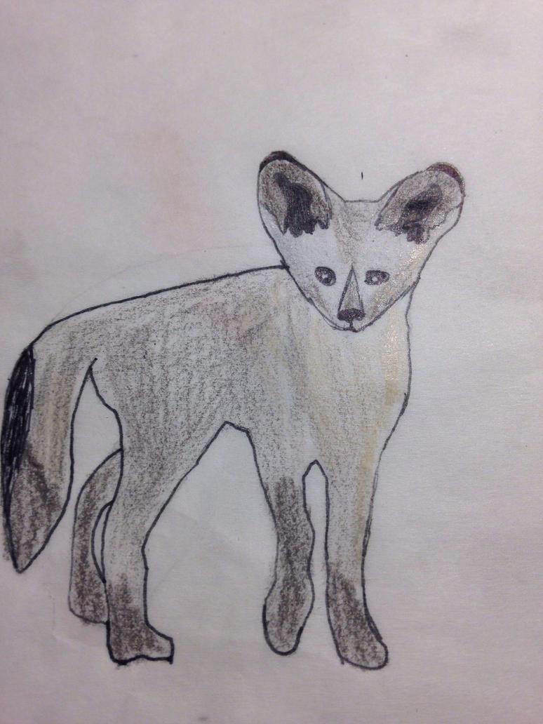 Bat-eared fox by redstonefox147