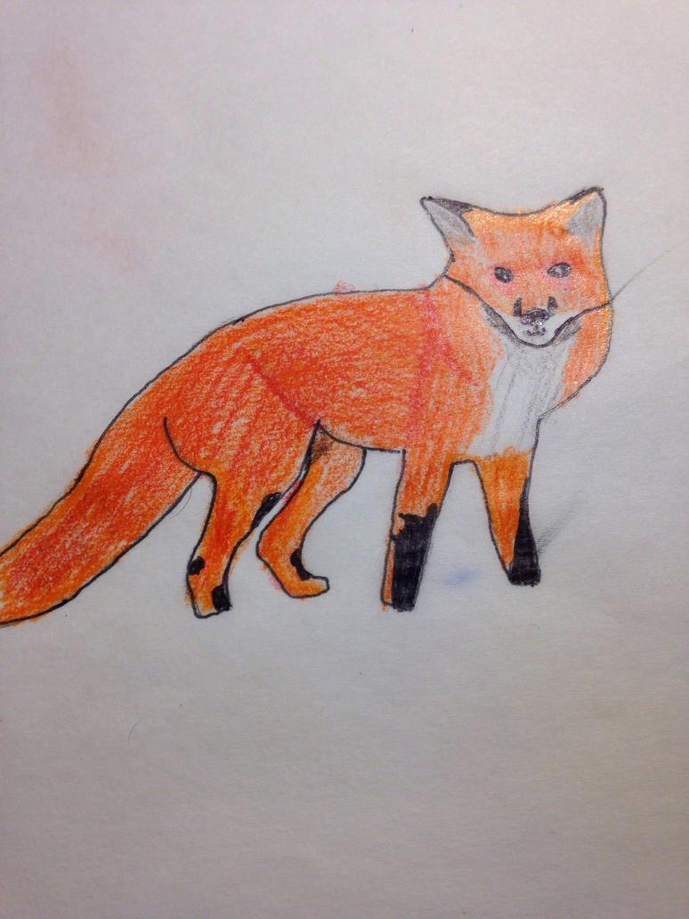 Red fox  by redstonefox147