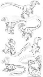 Freaky Feathers sketch dump by MightyRaptor